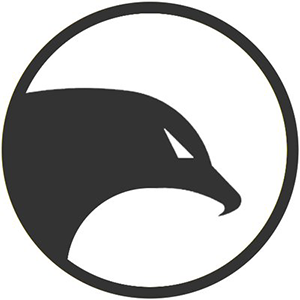 Insight Chain (INB)